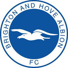 prediksi-brighton-hove-albion-vs-cardiff-city-25-januari-2017
